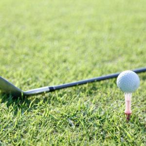 ロコロッカー、ゴルフ、奈良。